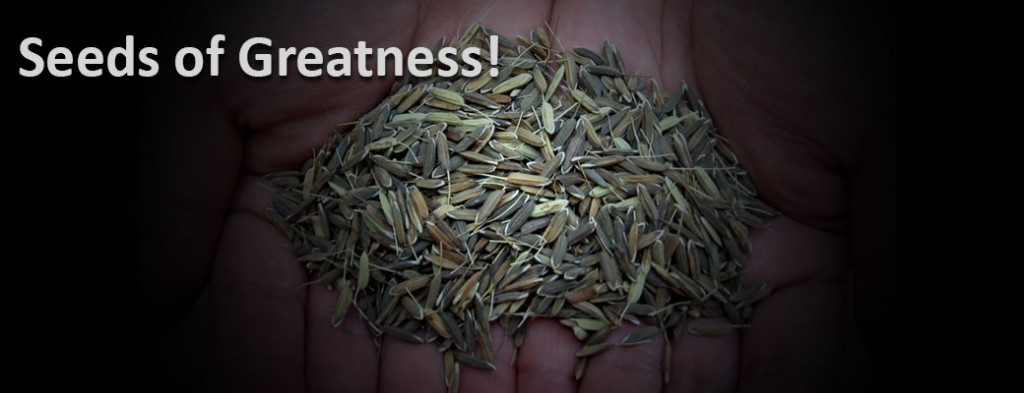 seeds-of-greatness